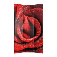 Petals and Red Rose 3 Panel Canvas Screen – PREMIER COLLECTION